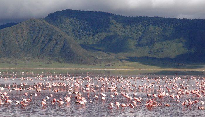lake manyara3