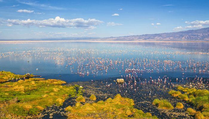 lake natron2